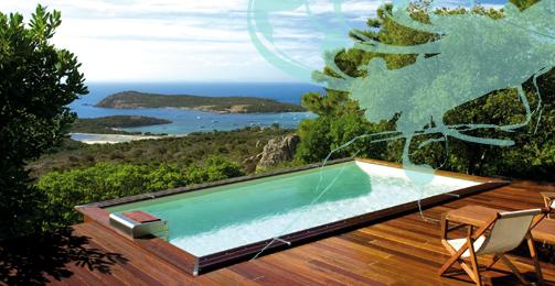 toutes les formes de petite piscine tout l 39 univers de la petite piscine. Black Bedroom Furniture Sets. Home Design Ideas
