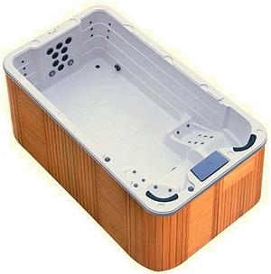 Spa de nage mono bassin